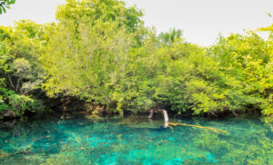 ¡Descubre la naturaleza en Punta Cana!