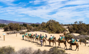 3 actividades imperdibles en Gran Canaria