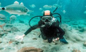 Los 5 mejores lugares donde practicar buceo o esnórquel en Canarias